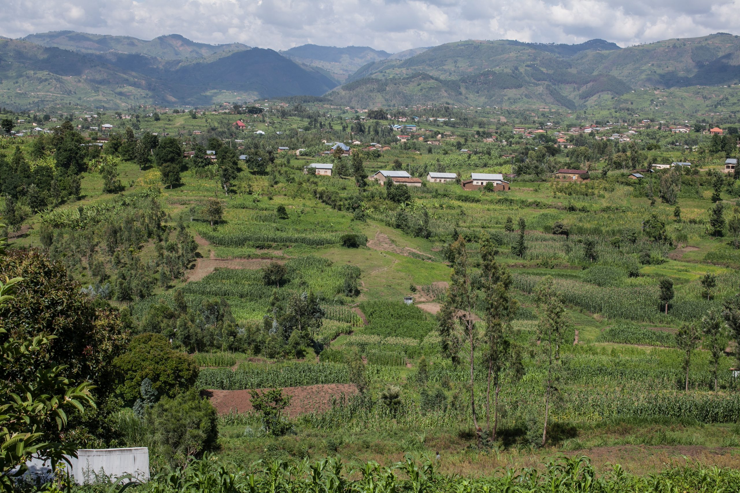 Onward and upward: Using a systems approach to unlock smallholder finance potential