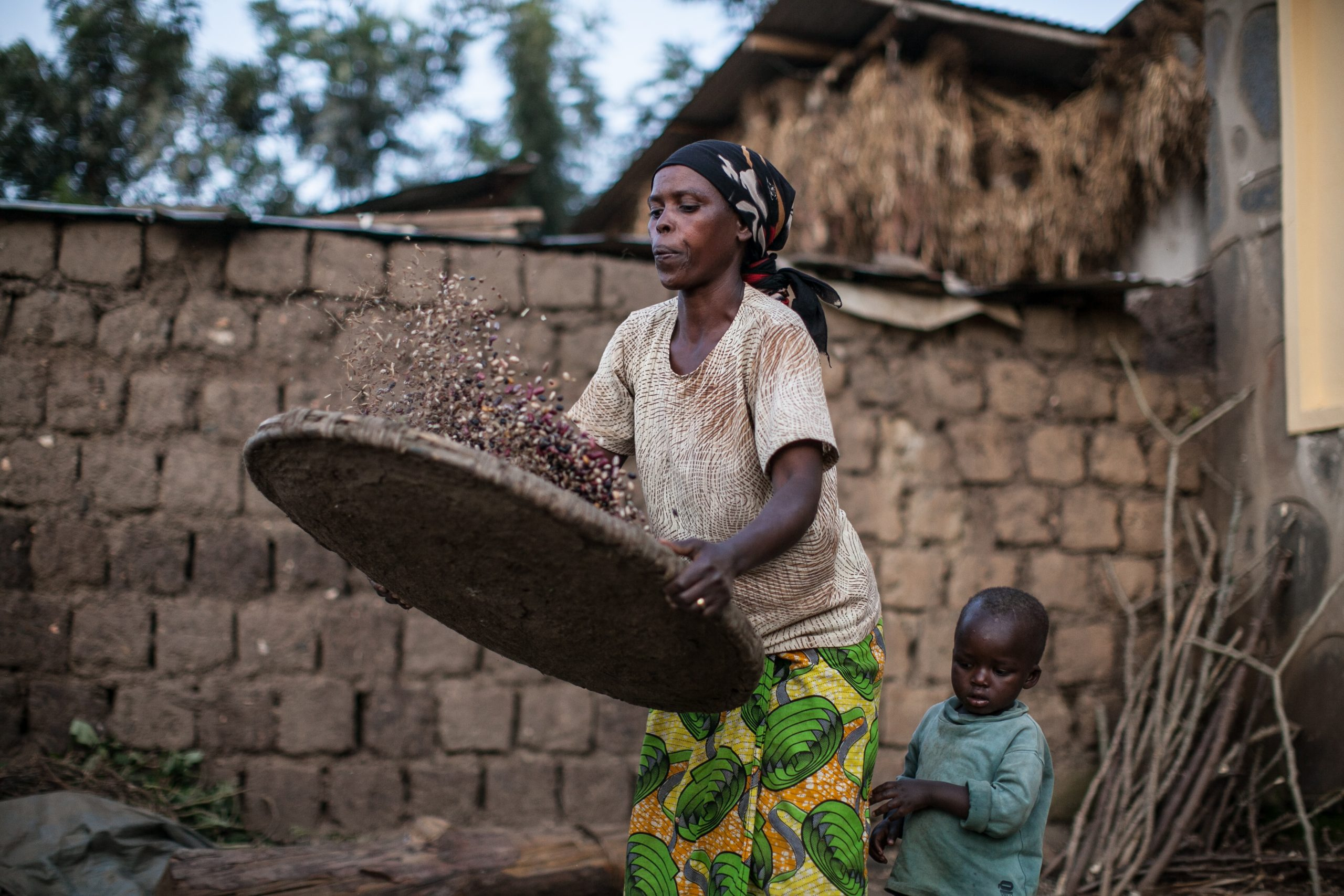 Understanding Rural Pathway Transitions: Insights from Kenya
