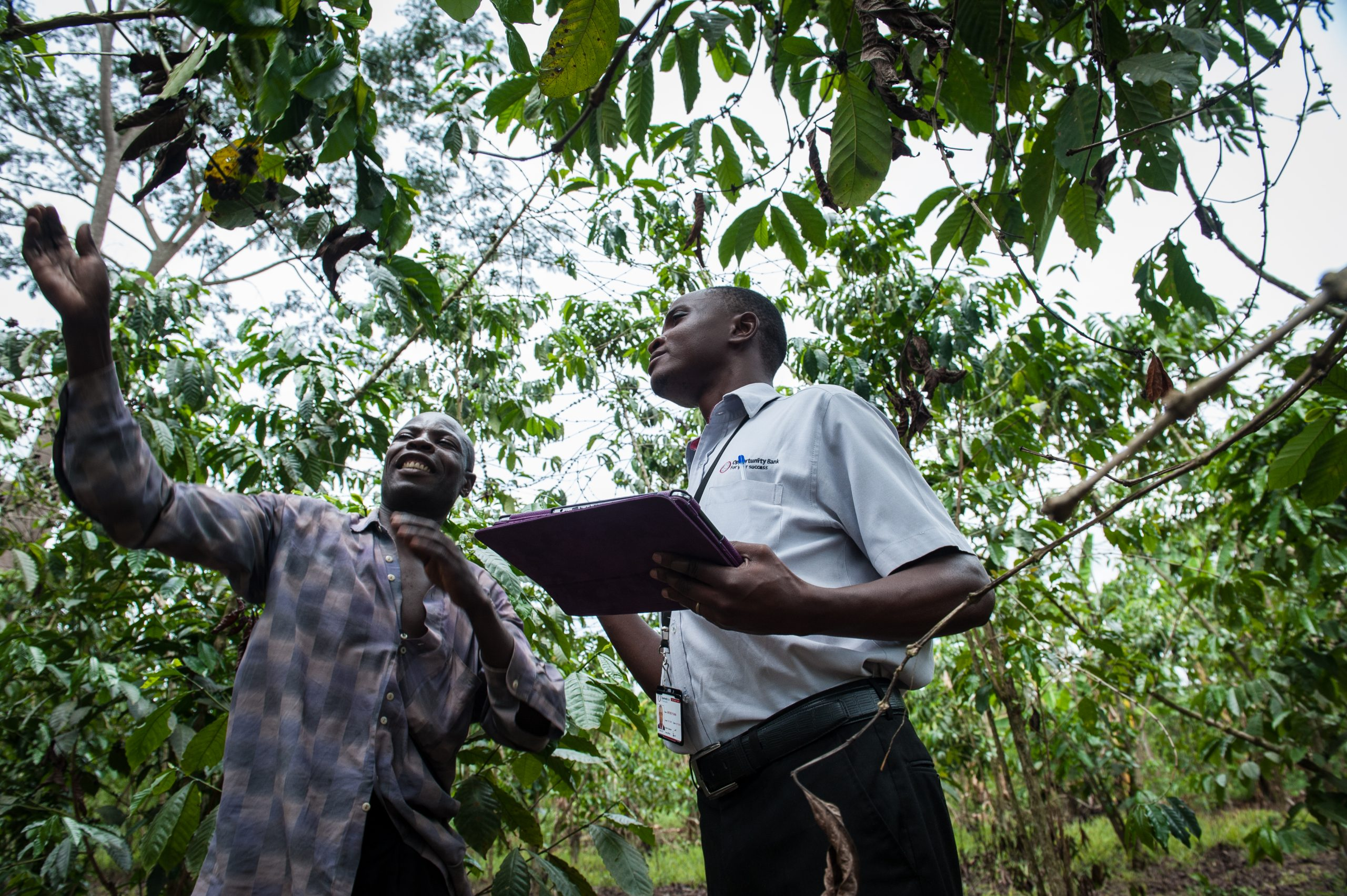 Show me the data: Using data to unlock access to finance for smallholders